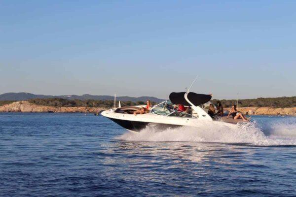 Sea Ray 295