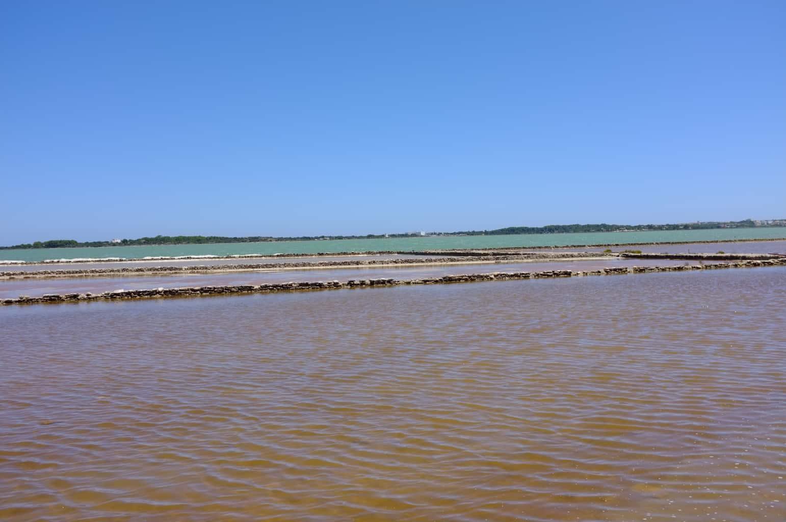 humedal Formentera