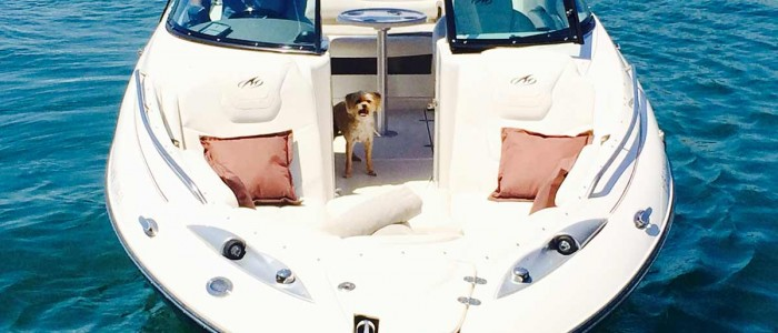 ibiza boat rental mk